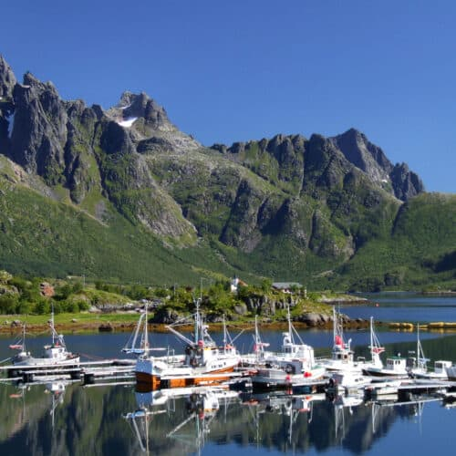 fiordo norvegese lofoten