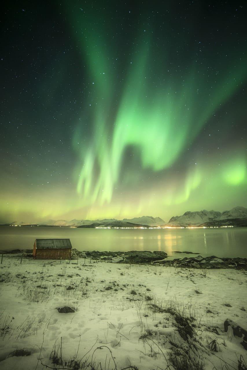 Isole Lofoten e il mare con l'aurora Foto di Zoltan Tot da Pixabay